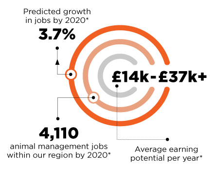 Predicted growth in jobs by 2020 is 3.7%. 4,110 animal management jobs within our region by 2020. £14k-£37k+ average earning